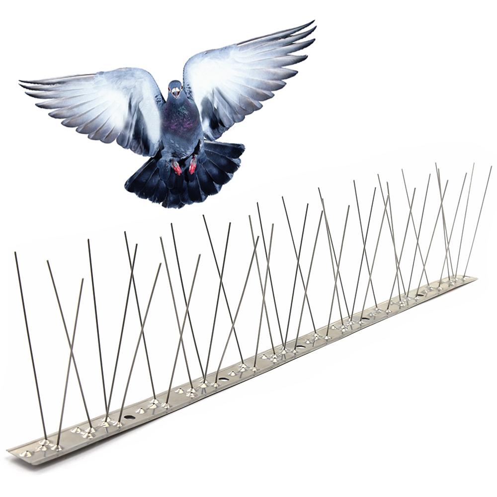 طارد الطيور في مصر .